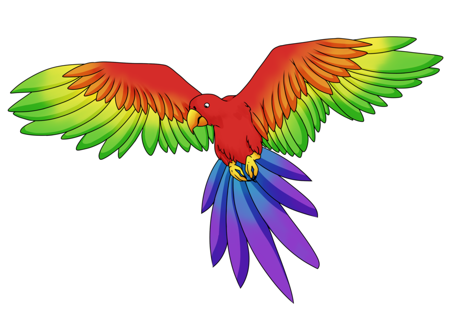 Rainbow by doviecaba on. Parrot clipart colorful parrot