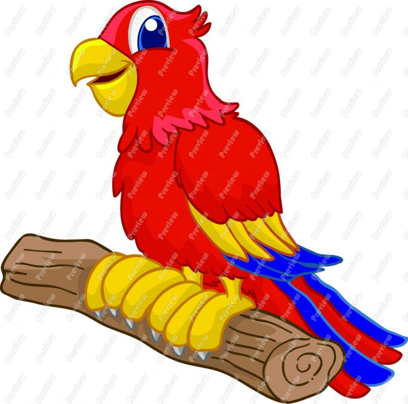 Free cartoon pictures of. Parrot clipart colour