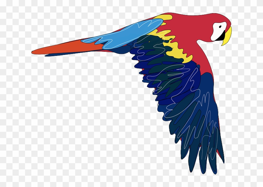 Parrot clipart colourful parrot. Cartoon bird flying colorful
