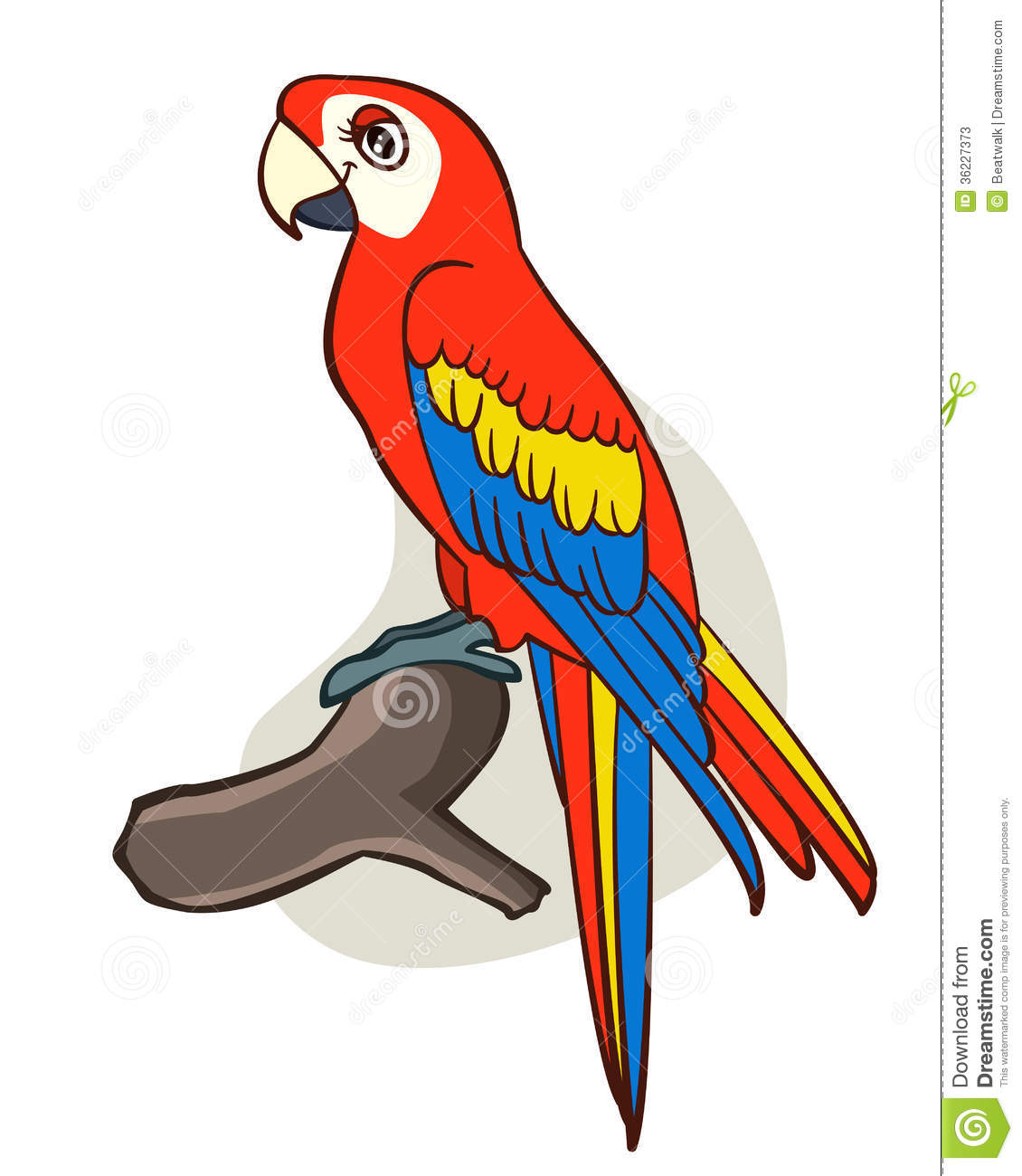 Free download best on. Parrot clipart colourful parrot
