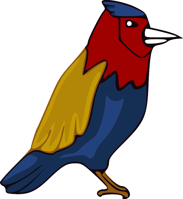 Jay medium image png. Parrot clipart colourful parrot