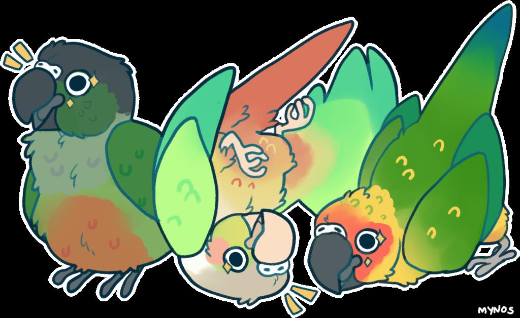 All hail bird orb. Parrot clipart green cheek conure