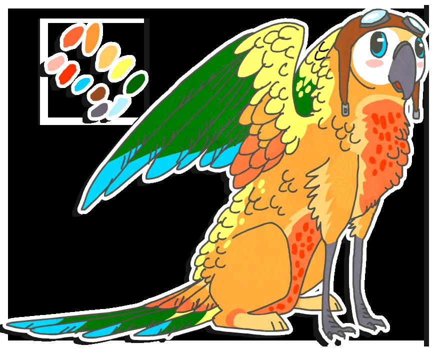 Parrot clipart green cheek conure. Sun griff for sunut