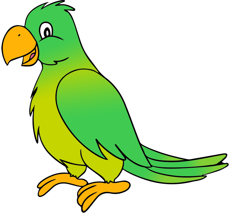 Parrot clipart green indian. February learn with us