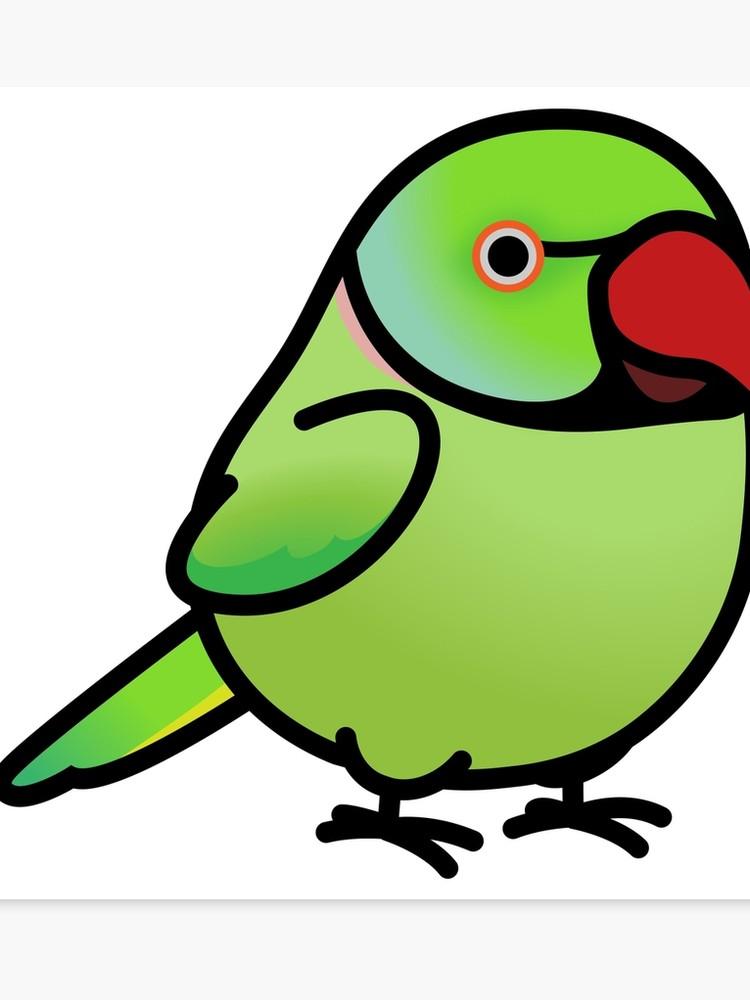 Chubby ringneck parakeet canvas. Parrot clipart green indian