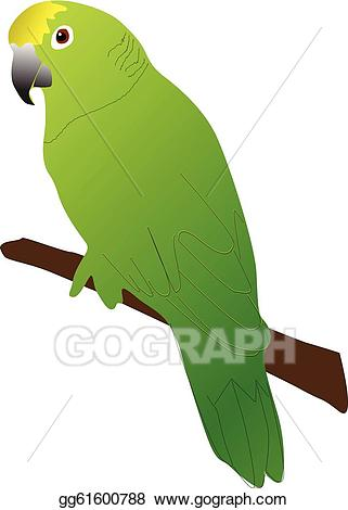 Parrot clipart green parrot. Vector stock illustration gg