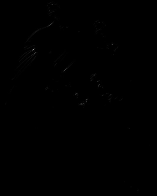 Birds silhouettes art islamic. Parrot clipart guacamaya