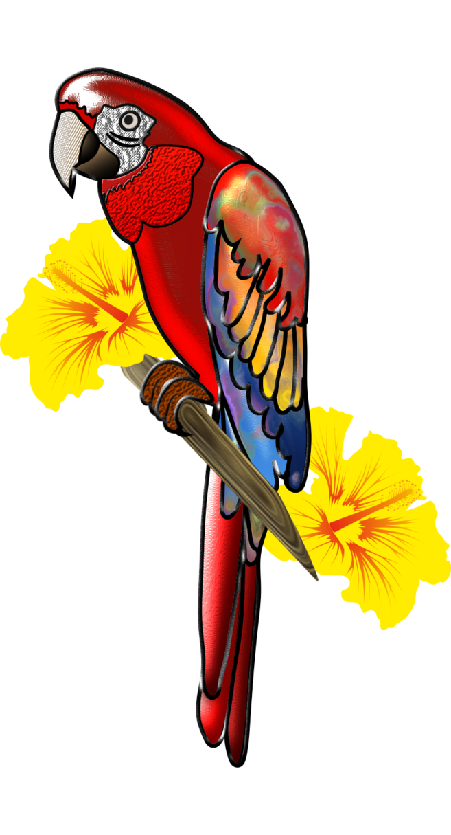 By creaciones jean on. Parrot clipart guacamaya