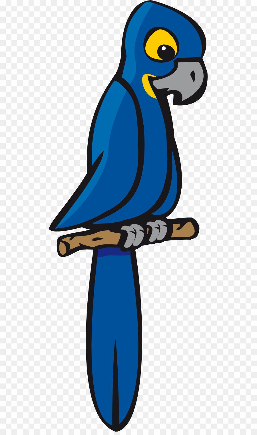 Parrot clipart hyacinth macaw. Cartoon png bird download