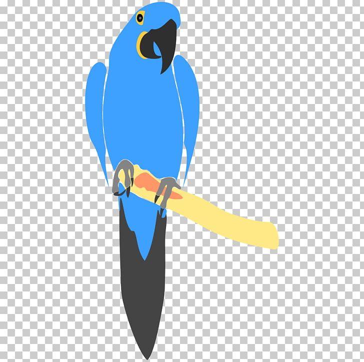 Bird png animal animals. Parrot clipart hyacinth macaw