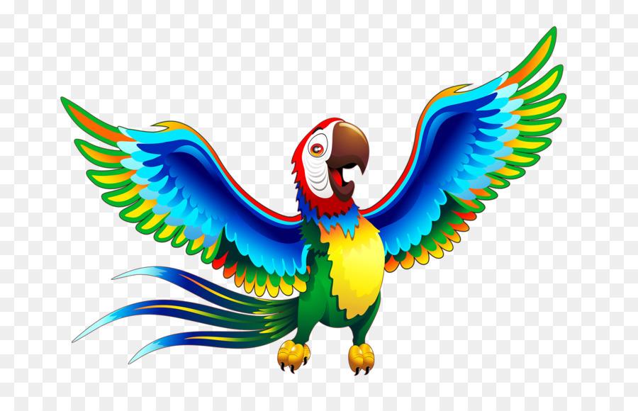 Parrot clipart jungle parrot. Background animal