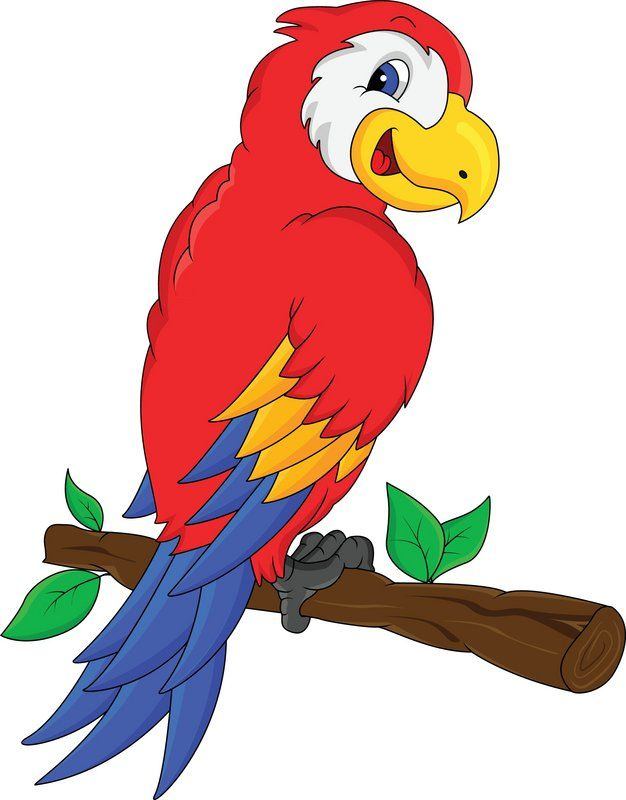 Parrot clipart jungle parrot. Pin by cheri froelich