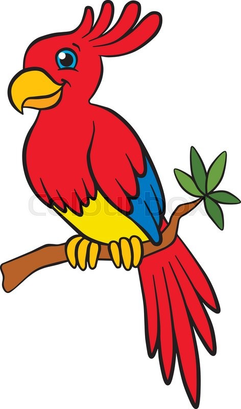 Parrot clipart kid. Cute free download best