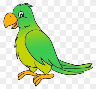 parrot clipart nuri
