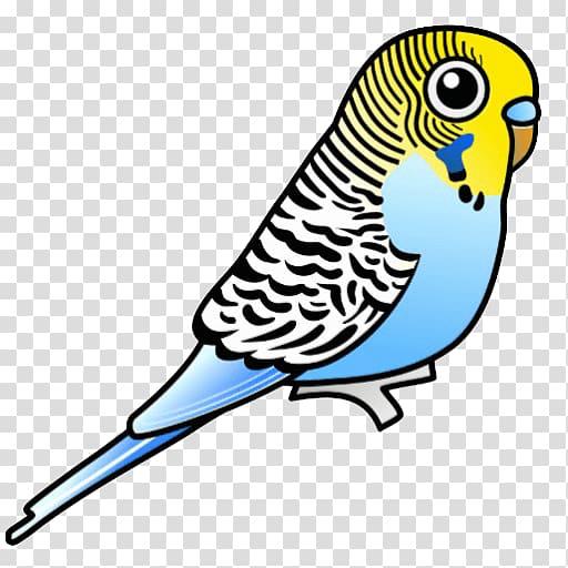 Parrot clipart parakeet. Budgerigar bird transparent