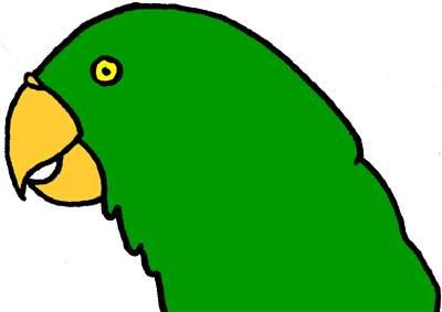 Clip art library . Parrot clipart parrot head