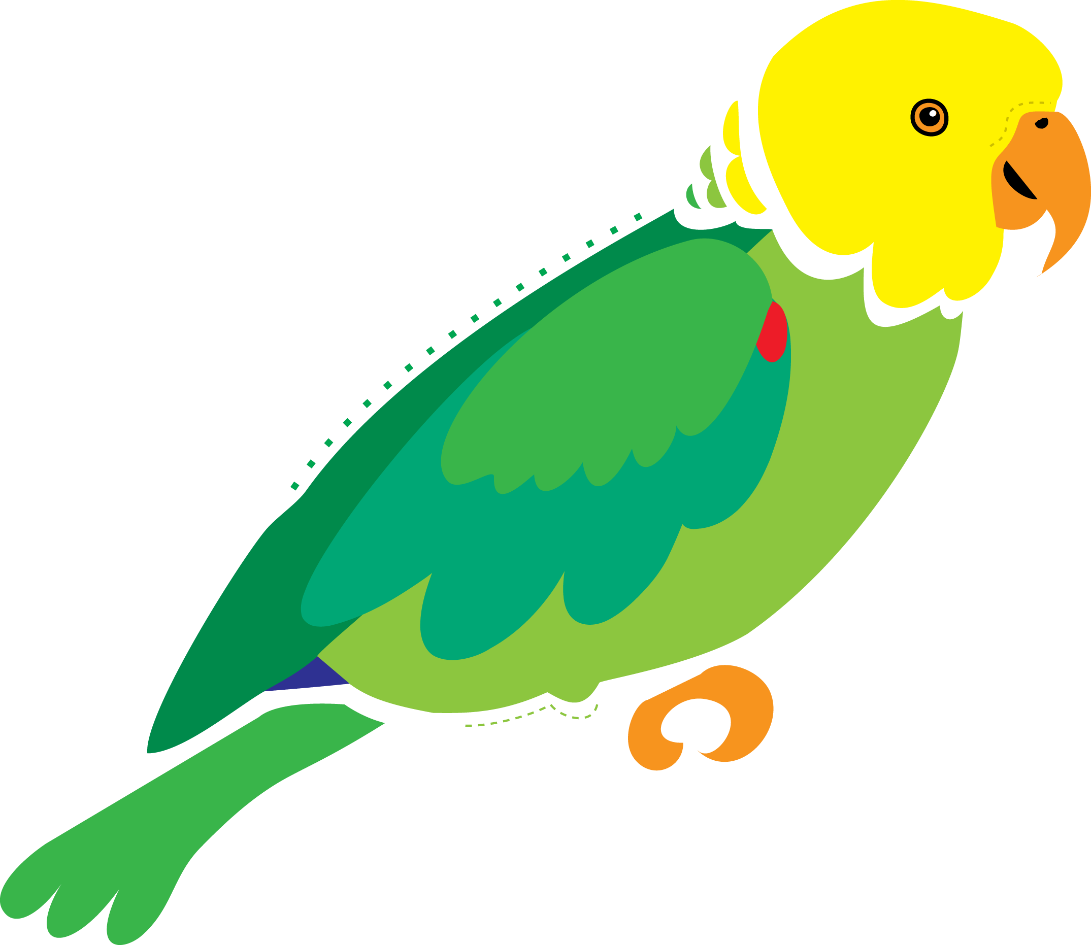 Lois mitchell s art. Parrot clipart parrot outline