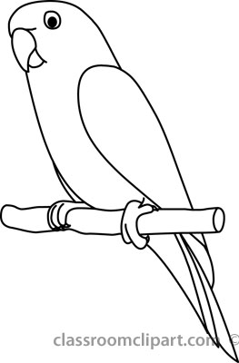 Parrot clipart parrot outline.  black and white