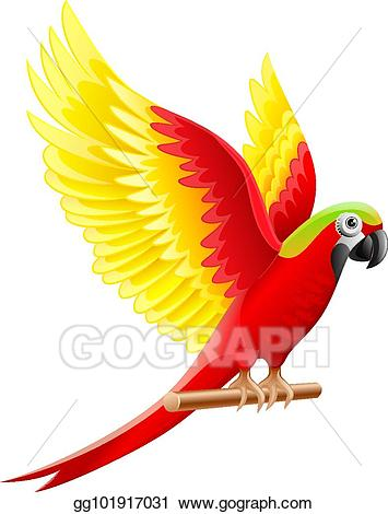 Parrot clipart parrot wing. Vector stock budgerigar ara