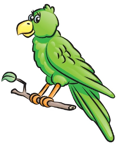 Parrot clipart perch. How to draw a