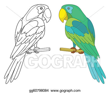 Parrot clipart perch. Stock illustration bird on