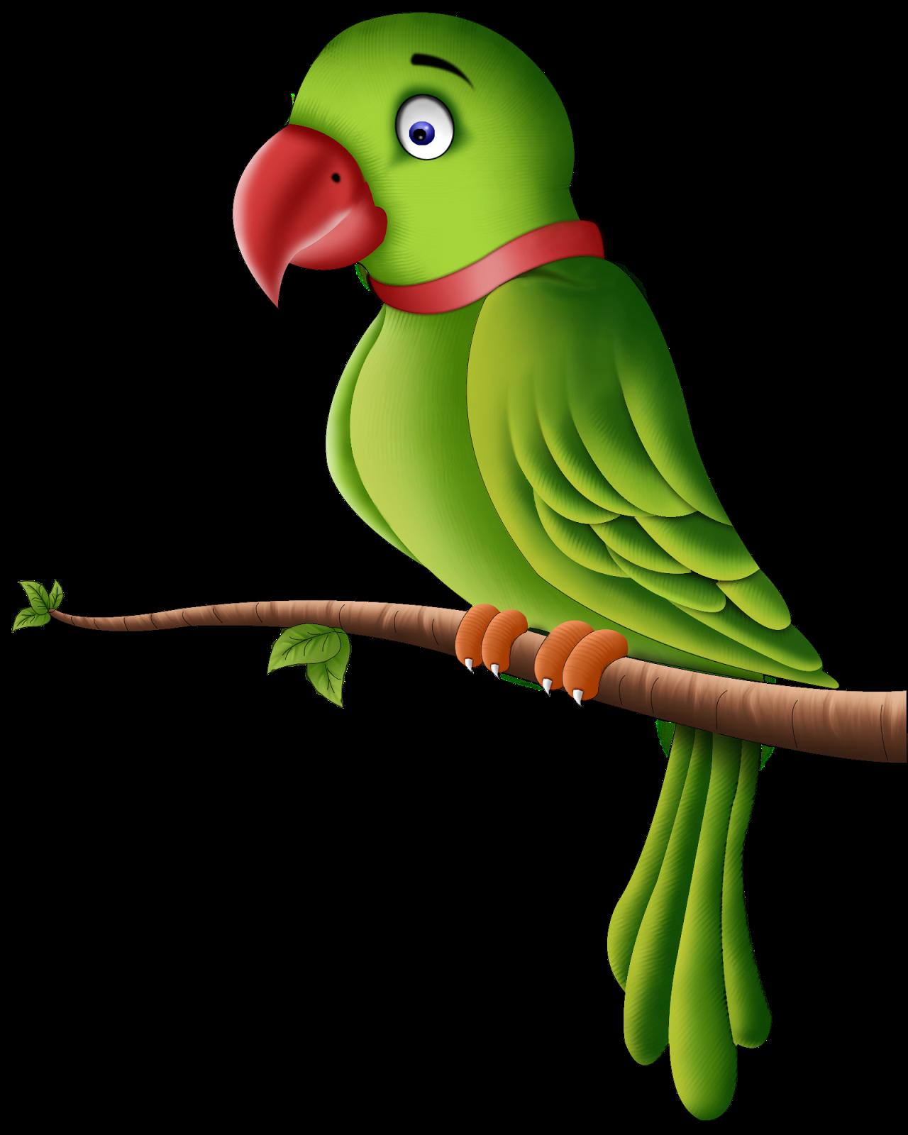 Parrot clipart perico. Bird clip art transprent