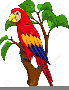Parrot clipart public domain. Free pirate images at