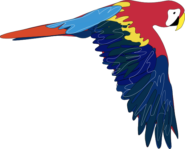 Parrot clipart public domain. Free to use clip