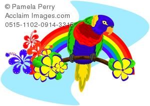 Clip art illustration of. Parrot clipart rainbow