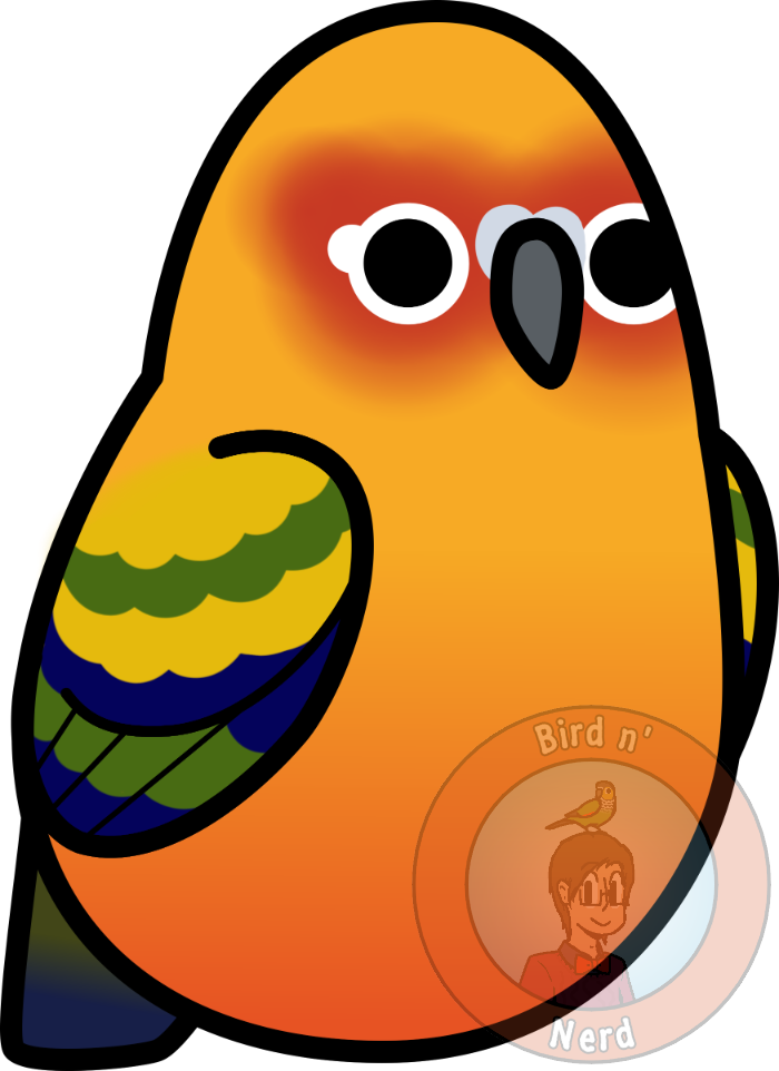 Parrot clipart sun conure. Too many birds by