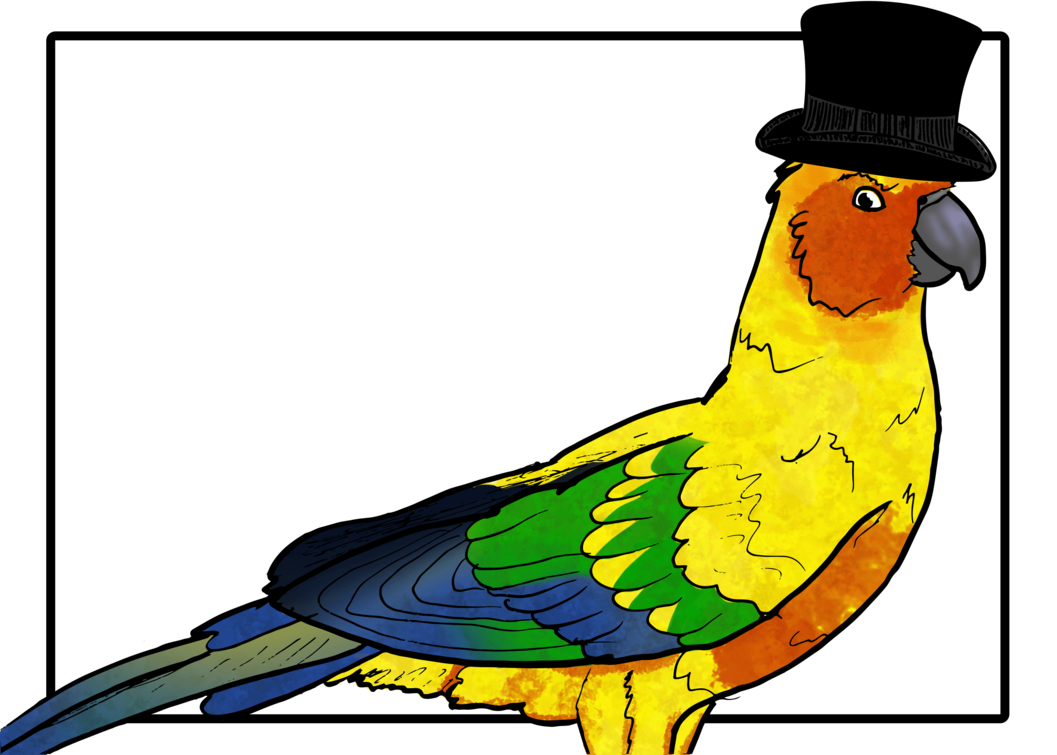 With a hat by. Parrot clipart sun conure