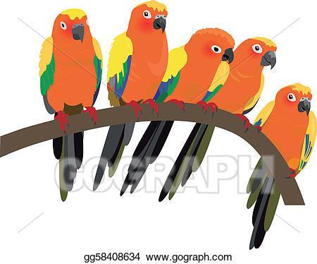 Parrot clipart sun conure. Eps vector bright parrots