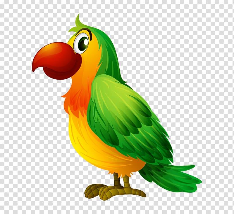Bird illustration cartoon hand. Parrot clipart three green