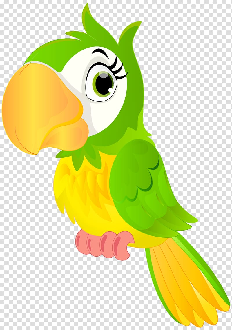 Parrot clipart three green. And yellow illustration bird
