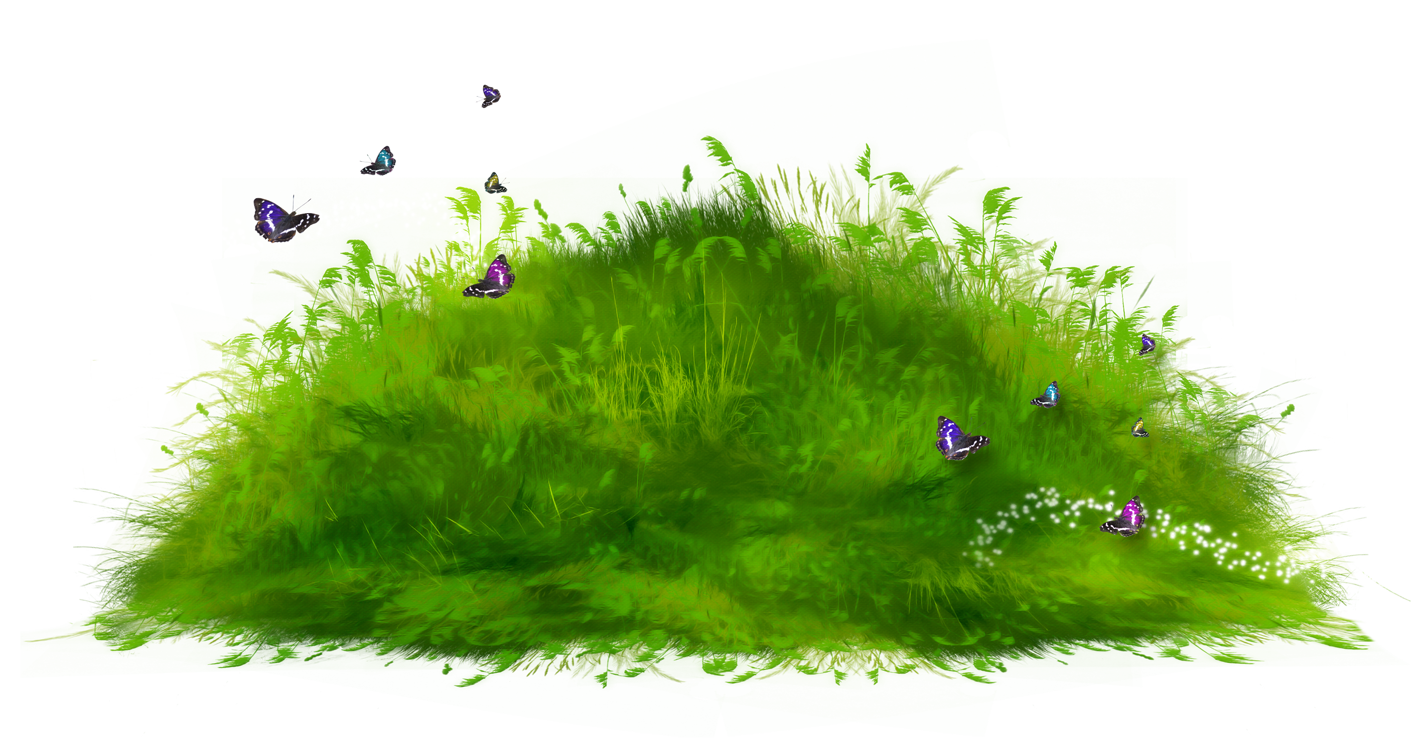pathway clipart grass path