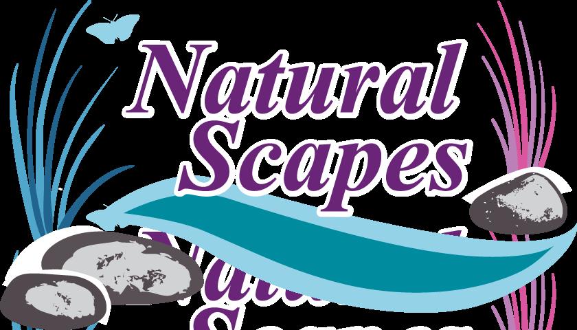 Portfolio natural scapes asheville. Pathway clipart stone step