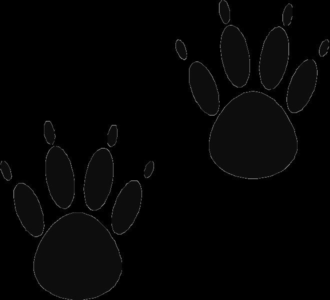 Paw clipart black bear. Page of clipartblack com