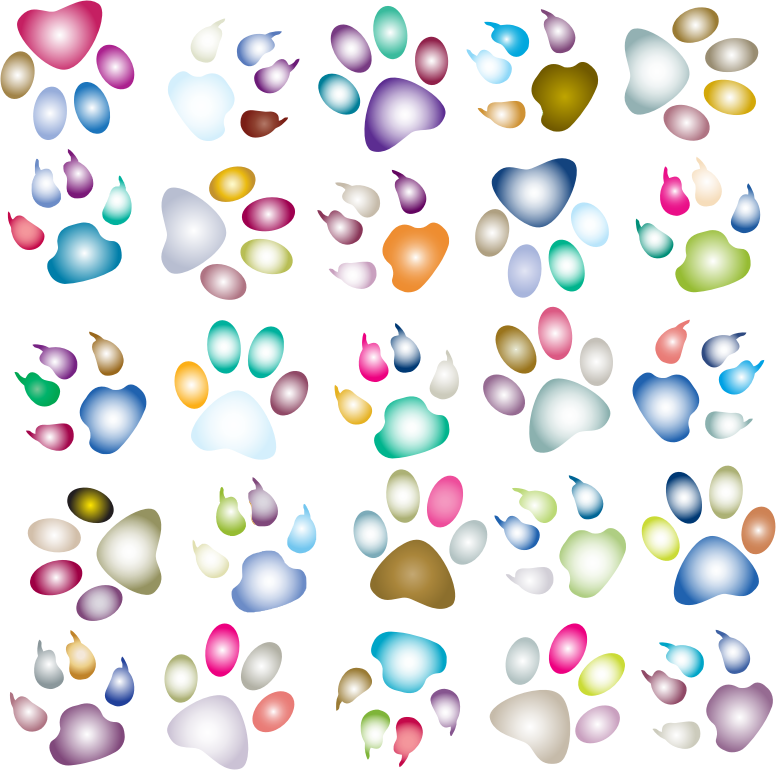 Paw clipart clear background. Colorful prints pattern reinvigorated