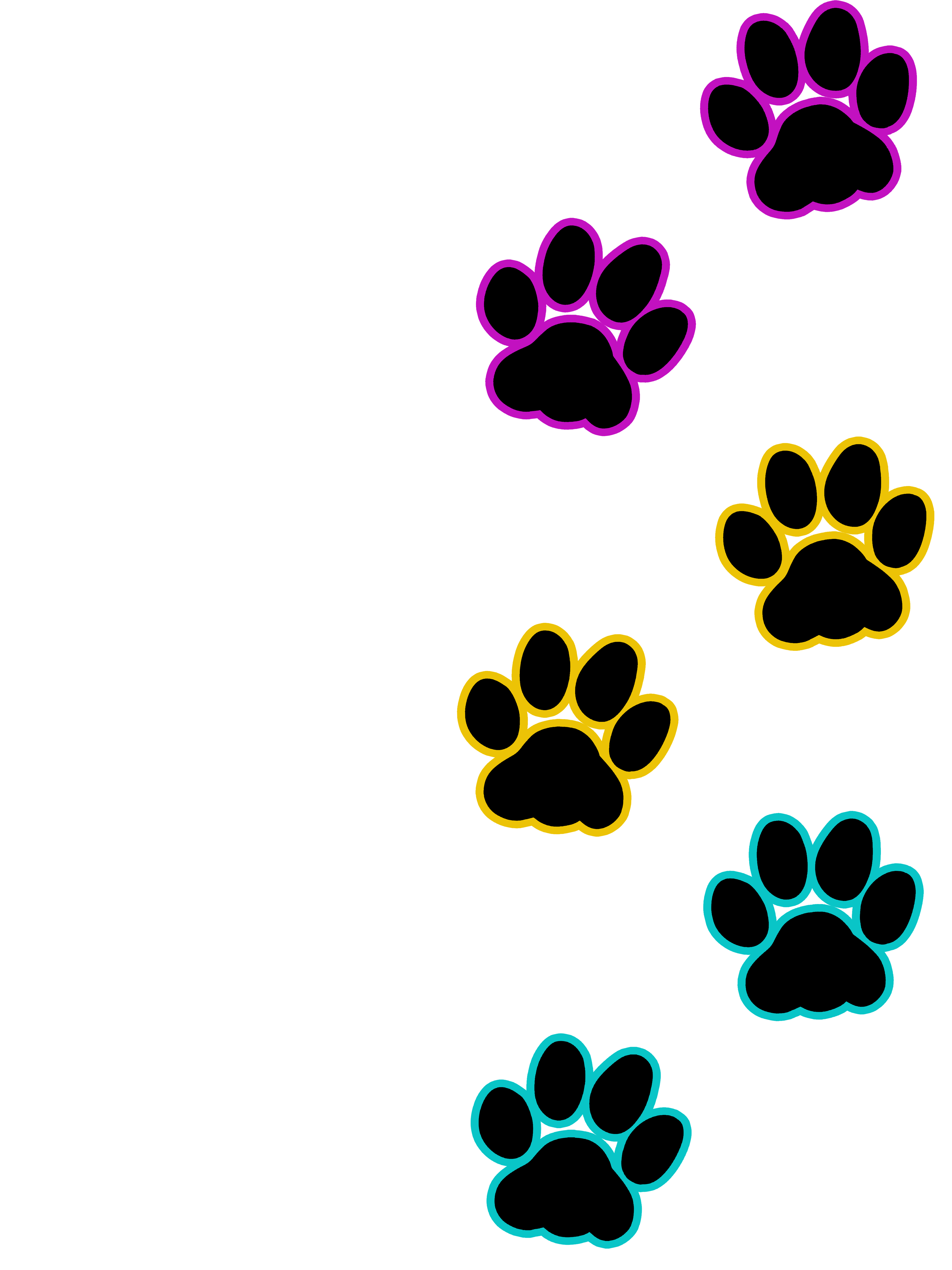 Cat print pansexual artworktee. Paw clipart colourful