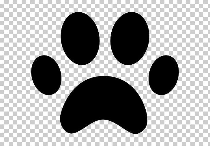 Cat png animal animals. Paw clipart dog leg