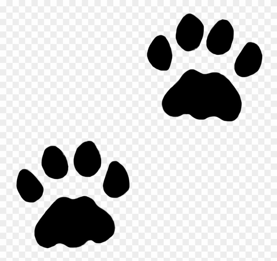 Track picture library stock. Paw clipart dog leg