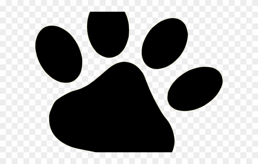 Paws clipart dow. Tiger paw png download