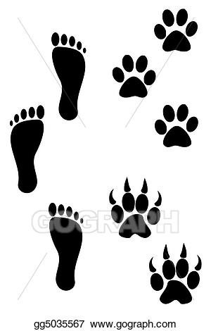 Stock illustration and prints. Paw clipart foot
