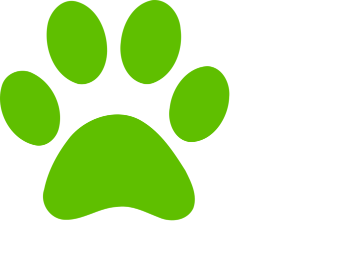 Paw clip art bclipart. Paws clipart green dog