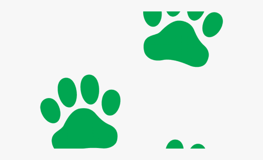 Paws clipart green dog. Paw prints transparent