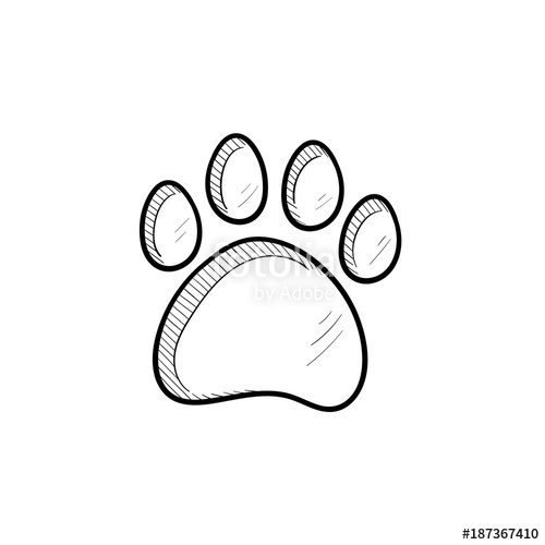 Paw clipart hand drawn. Vector print outline doodle