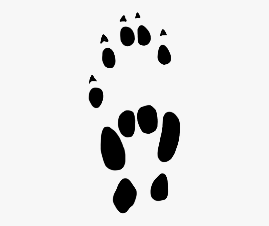 Mouse prints free . Paw clipart house cat