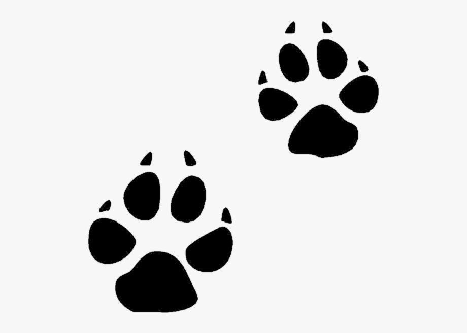 Pawprint clipart cat.  paw print clip