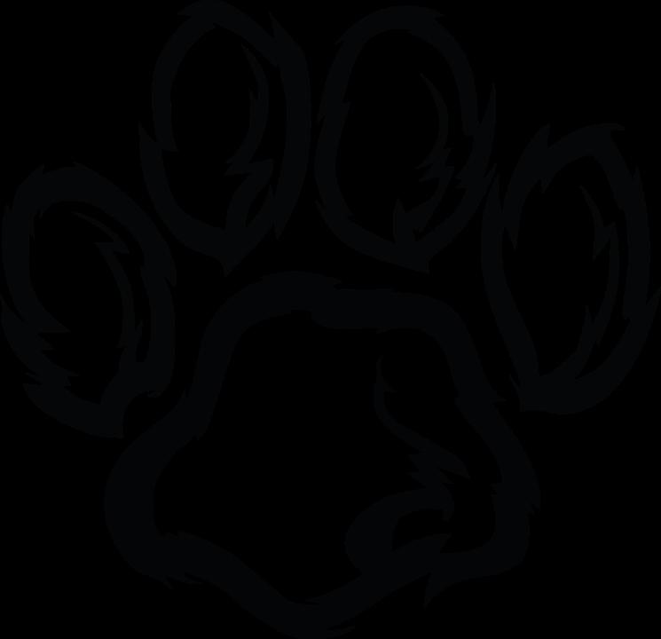 Dog paw prints shop. Wildcat clipart face
