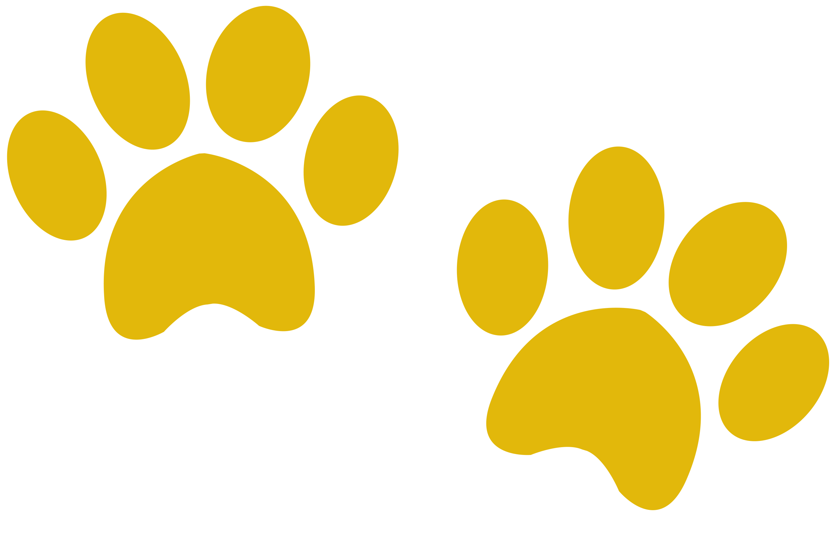 Paws clipart yellow dog. Owners all our cottages